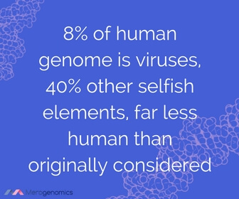 Image of article quote on viruses
