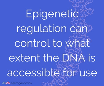 Image of article quote on epigenetic modification