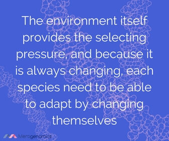 Image of Merogenomics article quote on effects of climate change on species