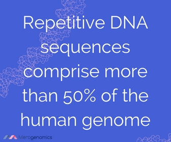Image of Merogenomics article quote on human genome structure