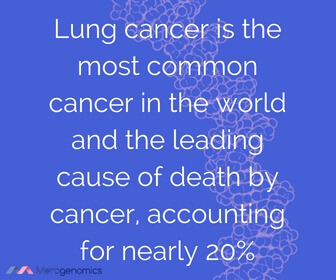 Image of Merogenomics article quote on lung cancer stats