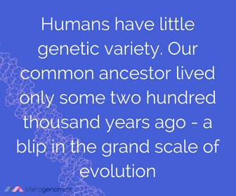 Image of Merogenomics article quote on human genetic diversity