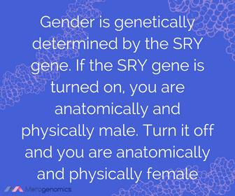 Image of Merogenomics article quote on gender genetics