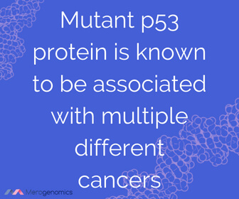 Image of Merogenomics article quote on mutations that cause cancer