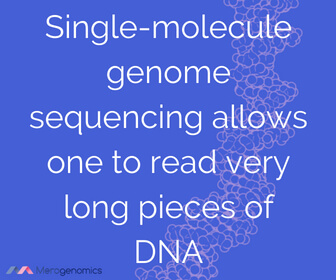 Image of Merogenomics article quote on DNA sequencing technologies