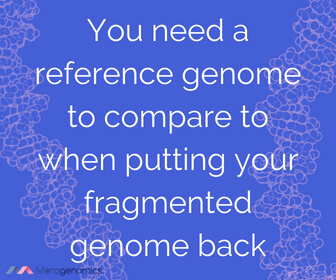 Image of Merogenomics article quote on human genome mapping