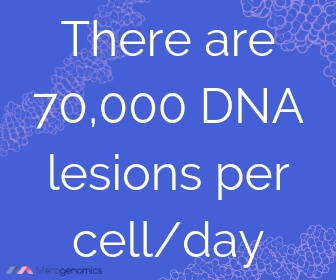 Image of Merogenomics article quote on how people get cancer