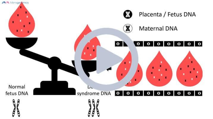 Image of Merogenomics NIPT pregnancy screening short video