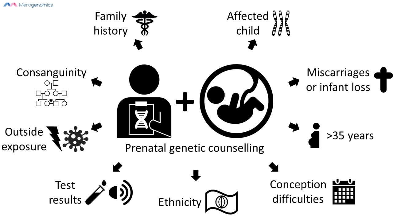 Image of Merogenomics Blog Figure on Pediatric genetic counselling