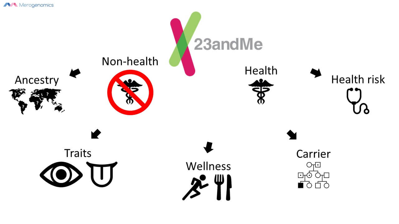 Merogenomics infographic on 23andMe services