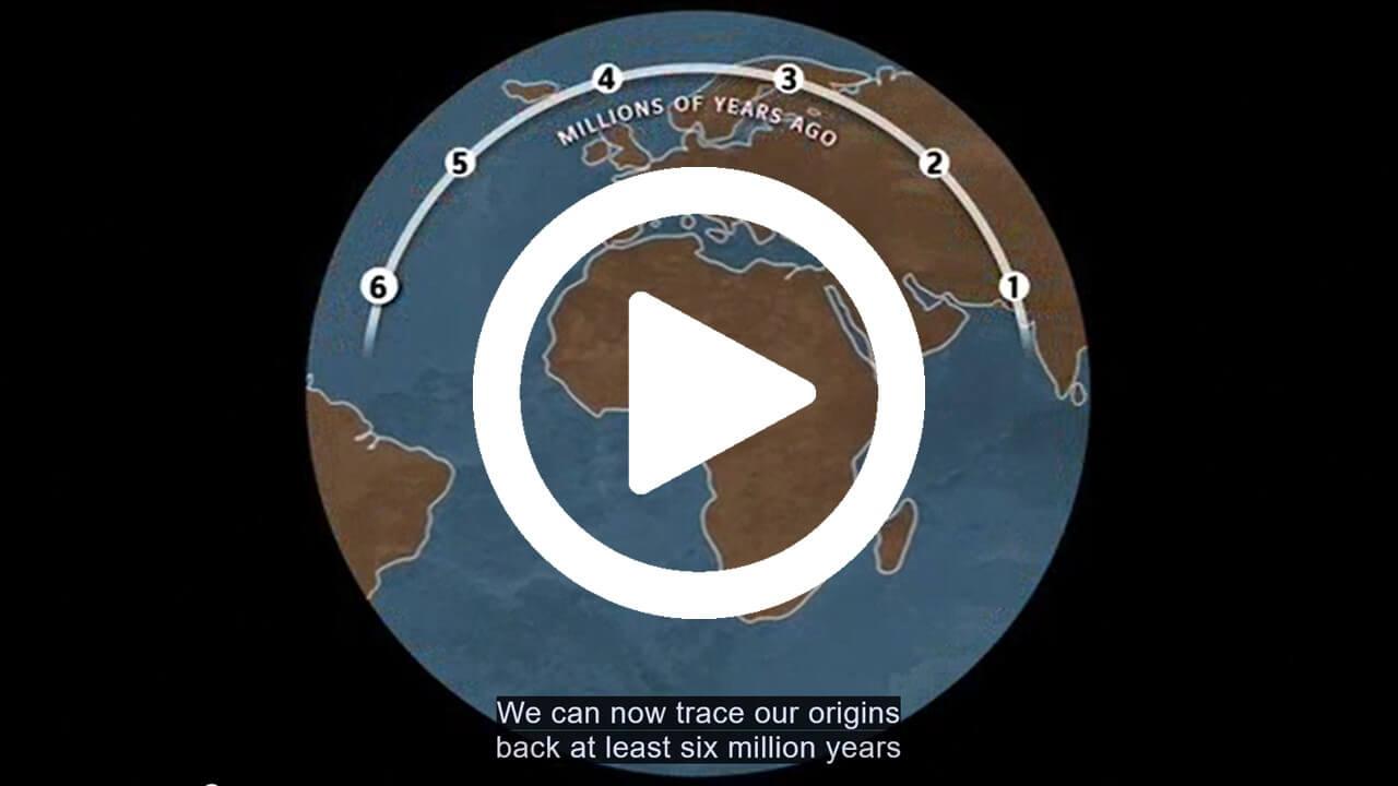 Image of Smithsonian Insititute Originis of Humans Video