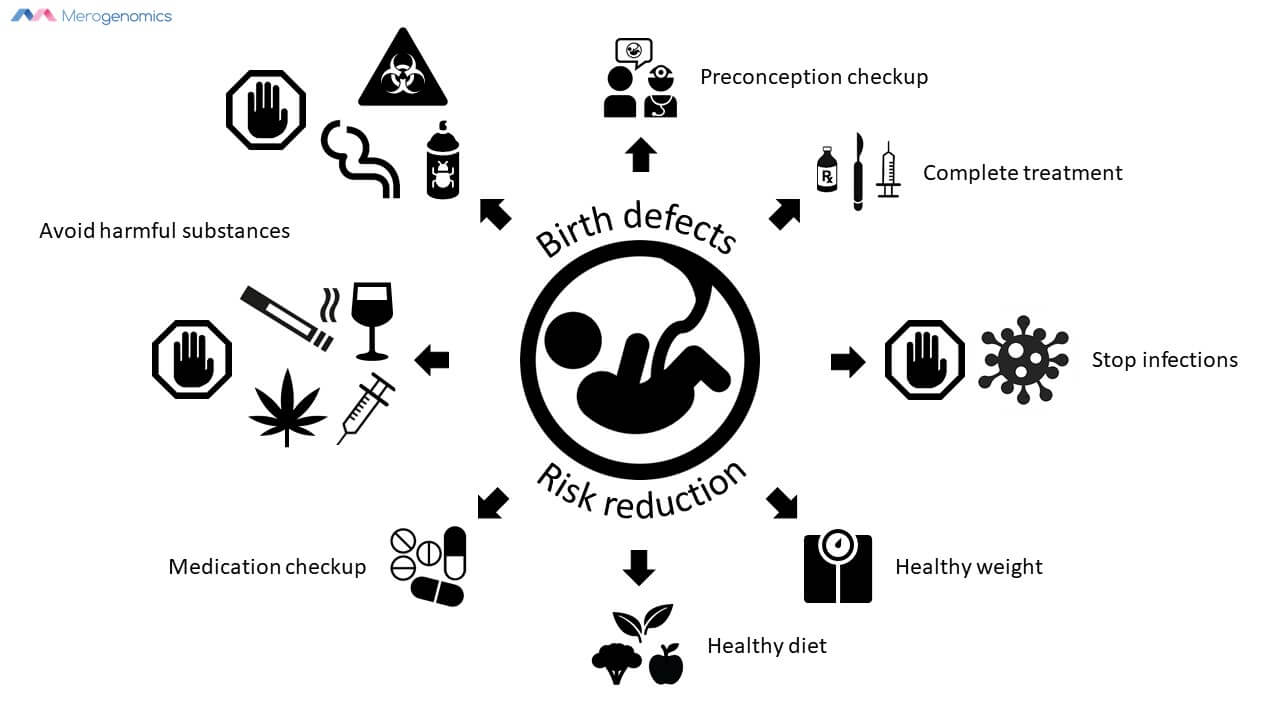 Merogenomics Blog Figure about Birthdefects Risk Reduction