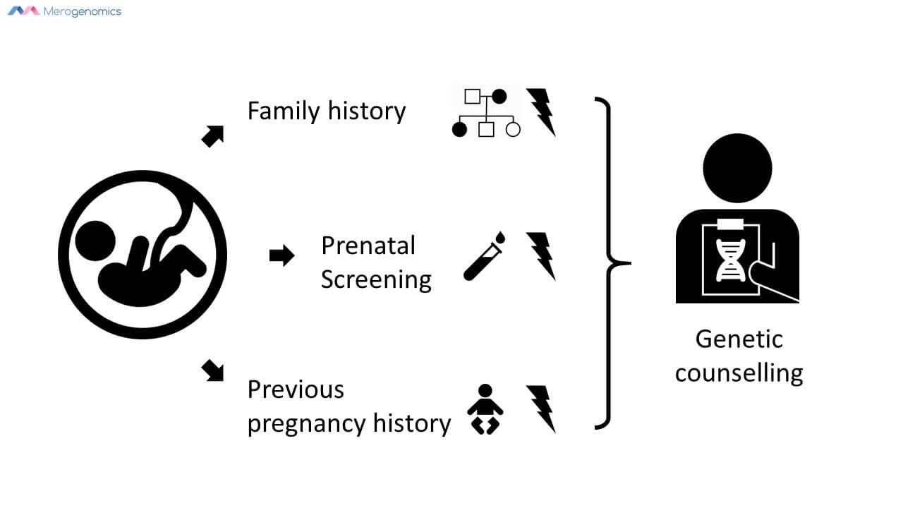 Merogenomics Blog Figure about Preconception GC