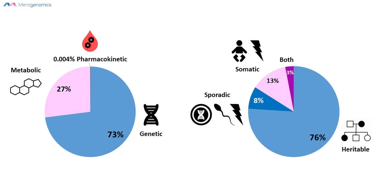 Merogenomics Blog Figure on Genetic Testing B