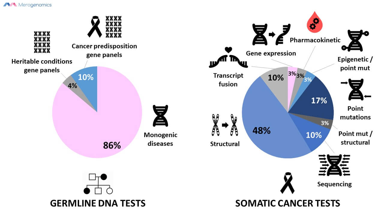 Merogenomics Blog Figure on Germline and Somatic Test Types