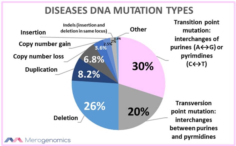 Merogenomics Blog Figure on Diseases DNA Mutation Types