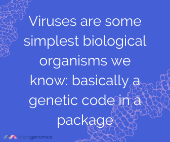 Image of Merogenomics article quote on virus definition