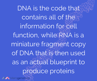 Image of Merogenomics article quote on central dogma of DNA