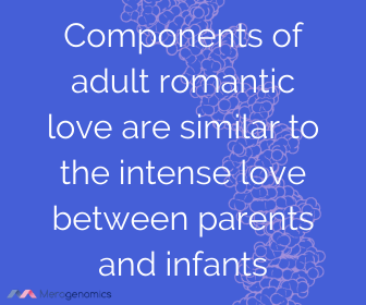 Image of Merogenomics article quote on romantic love vs family love