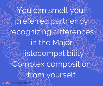 Image of Merogenomics article quote on smell of love