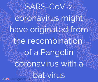 Image of Merogenomics article quote on coronavirus animal to human transmission