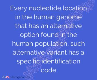 DNA mutation definition