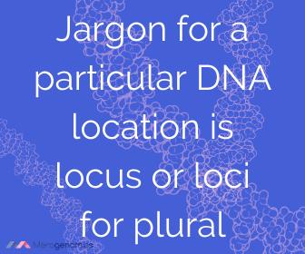 Locus definition