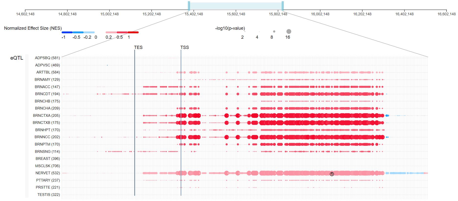 Blog Figure1 ACE2 gene map