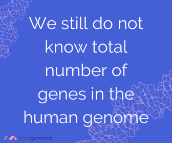 Image of Merogenomics article quote on number of genes in human