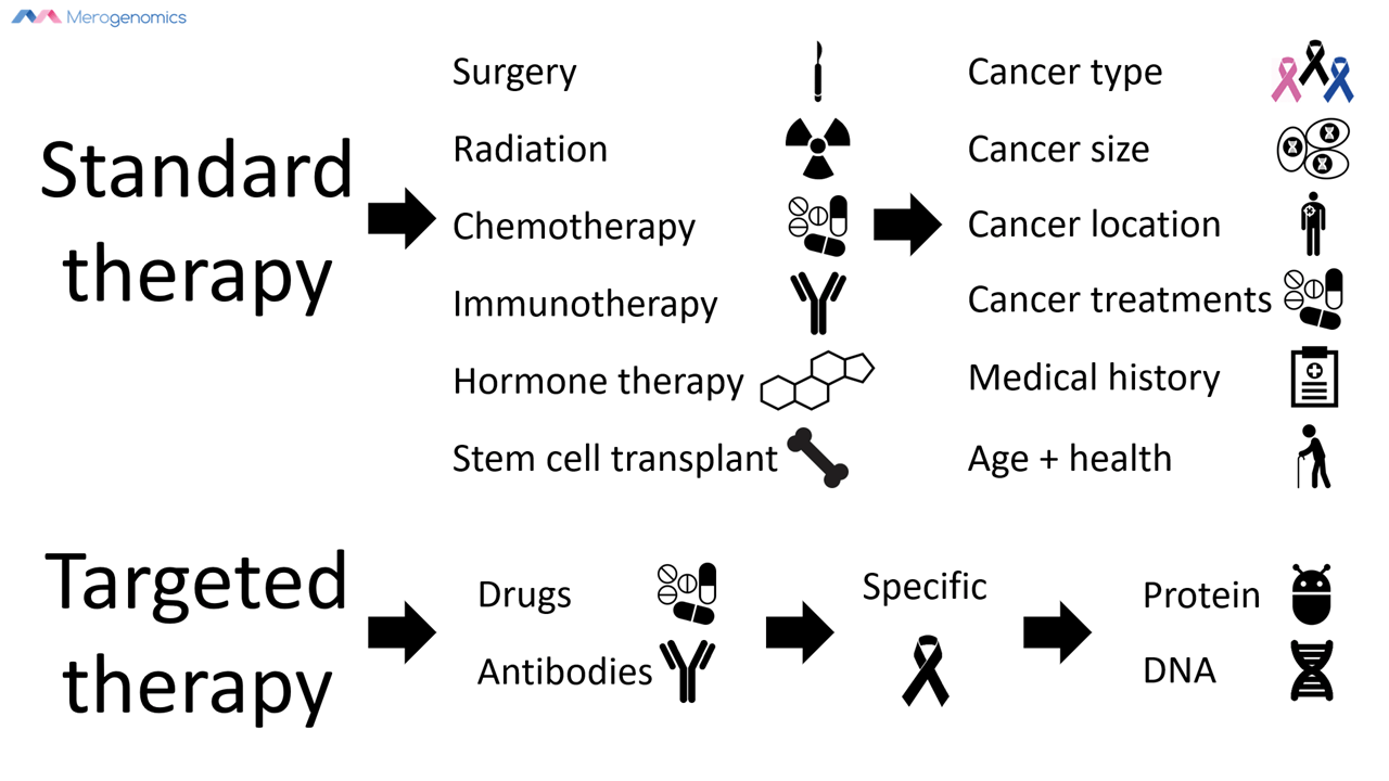 Image of Merogenomics Blog Figure on Standard vs Targeted cancer therapy