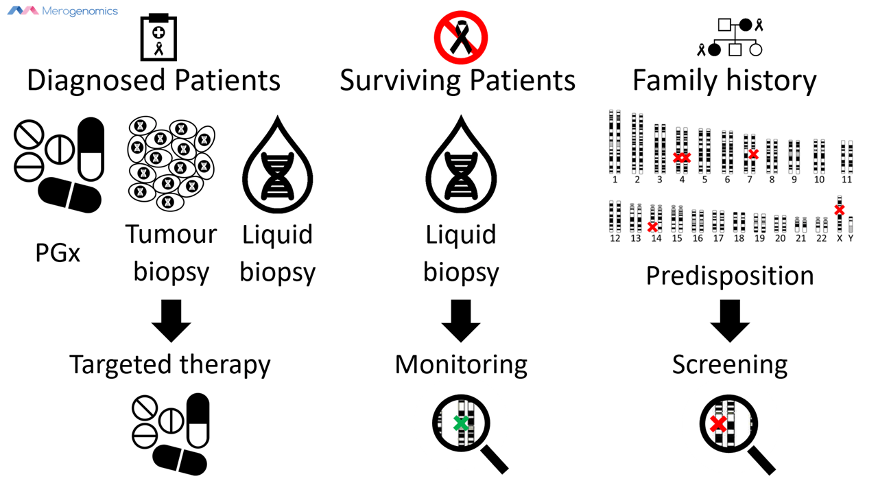 Image of Merogenomics Blog Figure on DNA testing for cancer patients