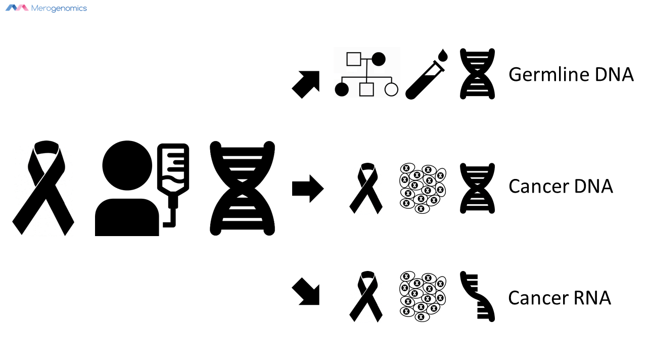 Image of Merogenomics Blog Figure on cancer nucleic acids tested