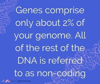 Image of Merogenomics article quote on how many genes in the genome