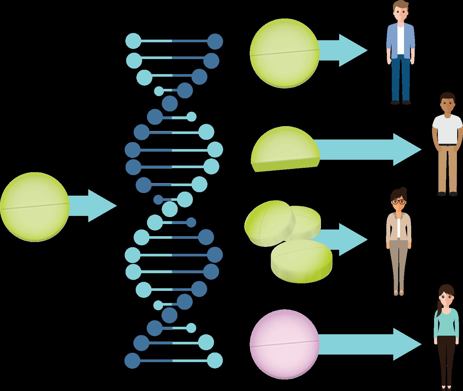 Image explaining pharmacogenetics concept