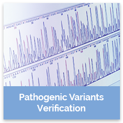 pathogenic variants verification
