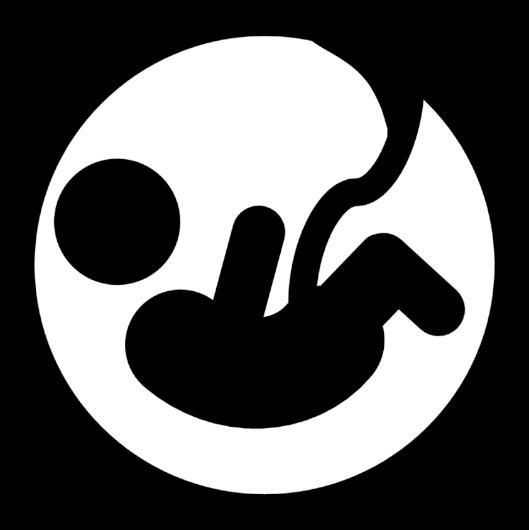 Image of Prenatal icon